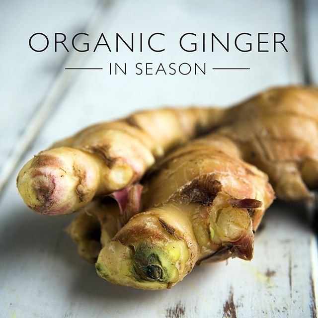 AUGUST 2015 – Organic Ginger. Australian, in season and packed full of goodness ....... Find your closest organic store on OrganicShopper.com.au  |  pic Cavan Flynn