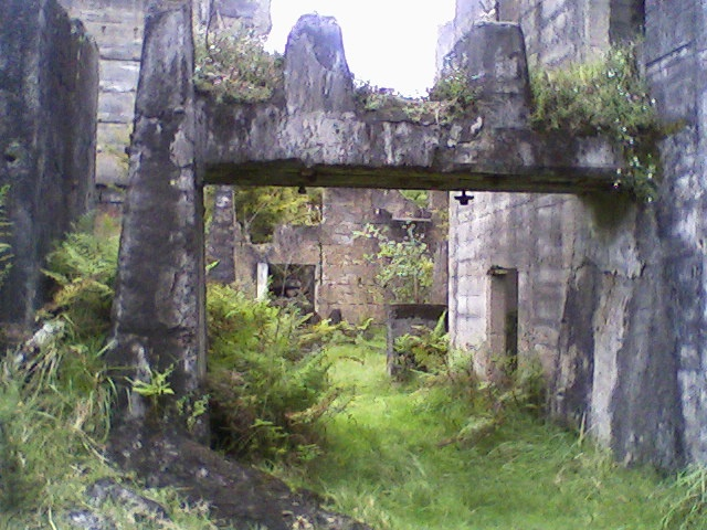 Old cement works ruins up near Warkworth, NZ