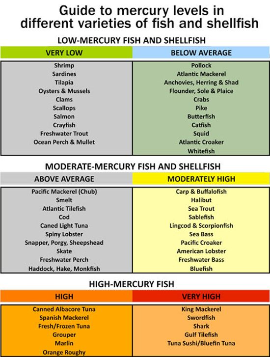 200 best images about clean eating on pinterest clean for Mercury in fish