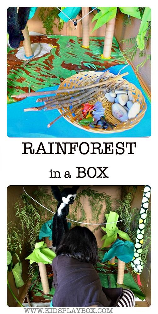 Kids will enjoy playing in this big cardboard box turned into a rainforest. You simply need some nature bits you collect on walks, colored paper, toys and yarn. Can also be a wonderful hands on learning tool for older kids learning about the layers of the rainforest