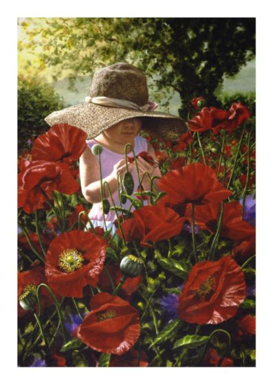 michaela and the poppies - transparent acrylic - www.paulconey.co.nz
