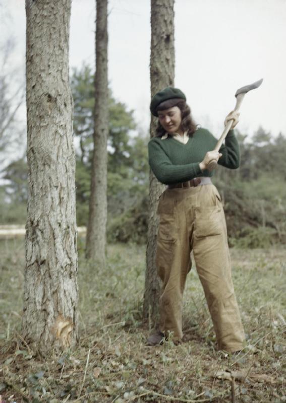 Jean Sheehan, [Women's Timber Corps], chopping a tree