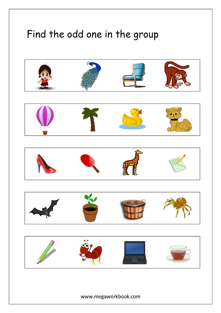 Odd One Out Worksheet 4 Living And Non Living