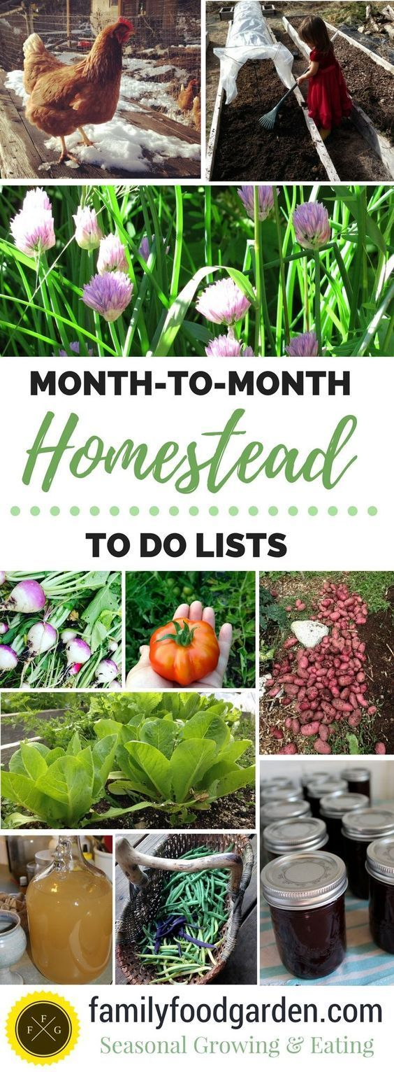 Stay Sesonally Organized with Monthly Homesteading to do Lists