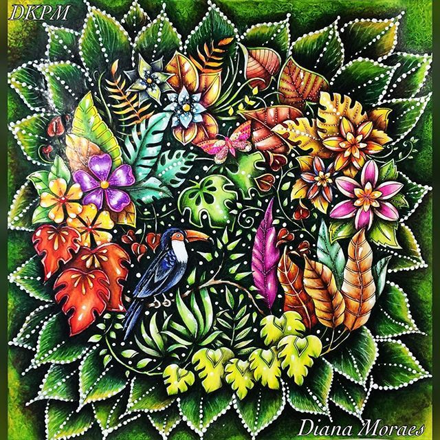 Magical Jungle Colouring Competition By Johannabasford Conto Com O LIKE De