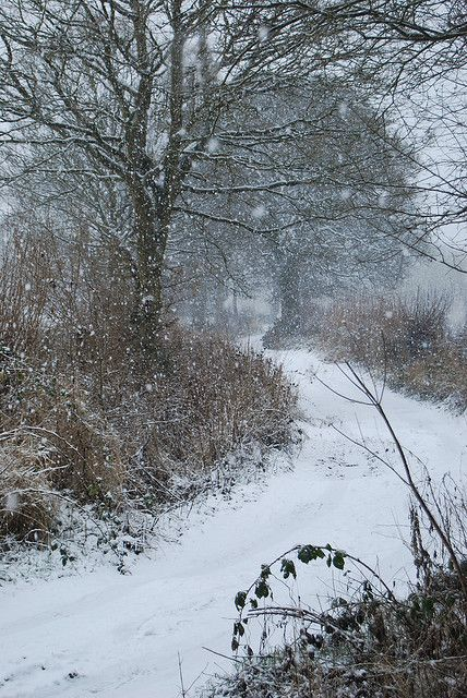 ~It's Been Snowin' - Derbyshire, England, by Keartona, via Flickr~
