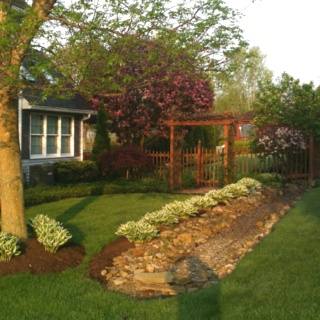 Side yard where we put in a dry river bed to catch all the neighbors runoff. No more flooded basement!