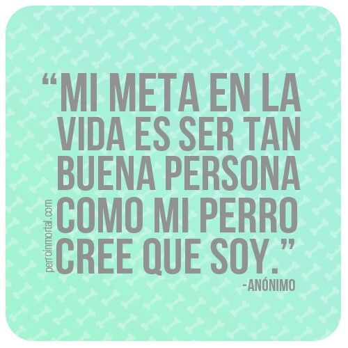 Love Quotes In Spanish: 17 Best Quotes In Spanish On Pinterest