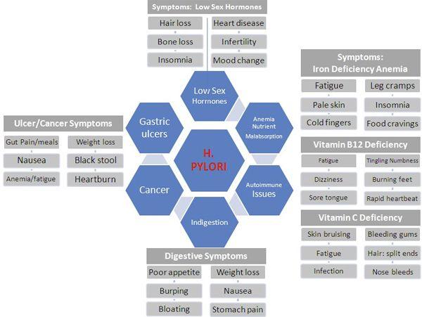 hpylori-symptoms-chart Fascinating article on H Pylori