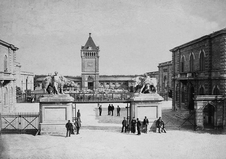 A marhavágóhidat a Soroksári út mentén építették fel, 1872-ben helyezték üzembe. Építése a kor egyik legnagyobb beruházása volt.(Index.hu)