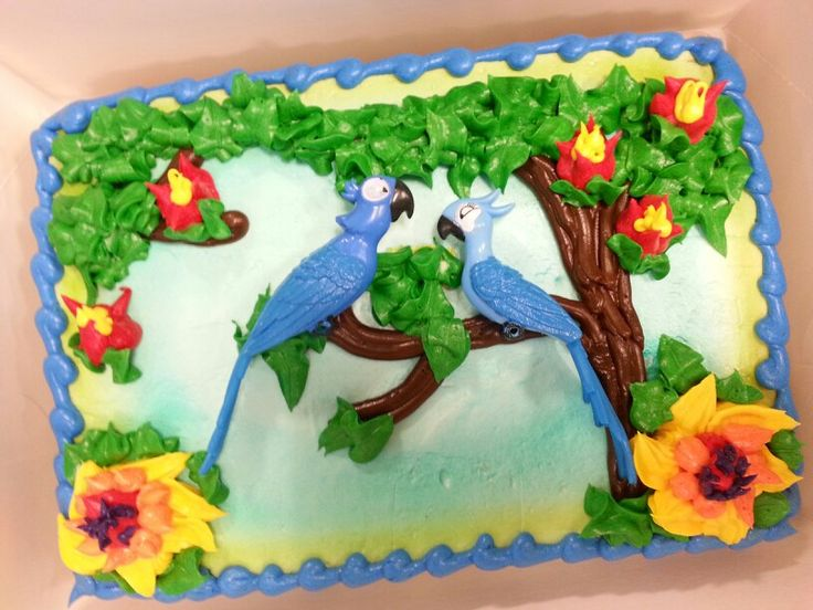 35 Best My Experiences As A Cake Decorator At Publix