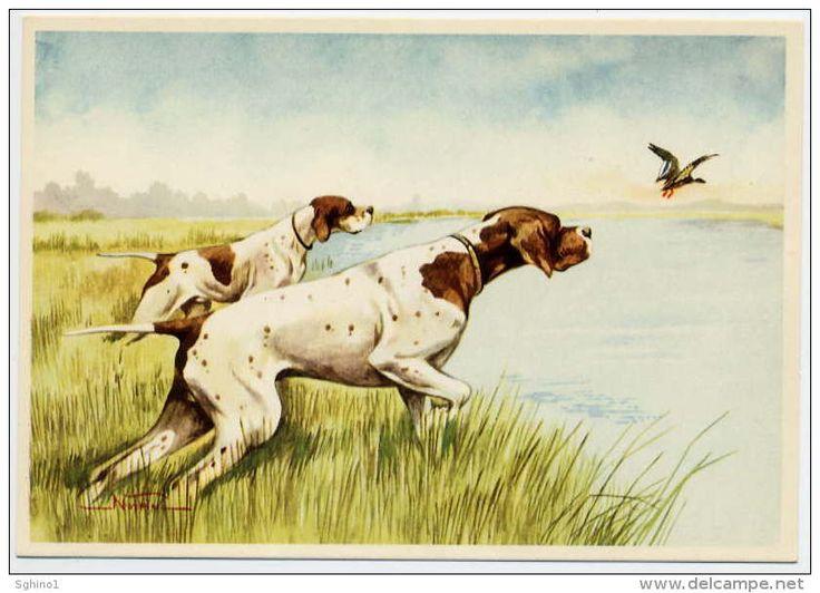 CANI DA CACCIA, Disegno - Design: NORFINI MARIO - HUNTING DOGS - CHIENS DE CHASSE - JAGDHUNDE - PERROS DE CAZA