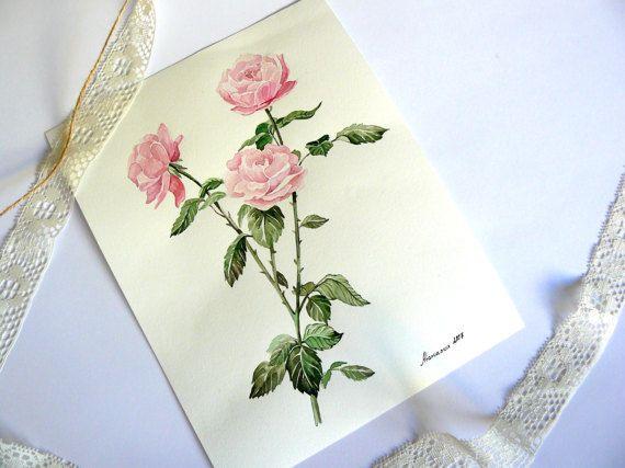Rose painting, Original watercolor painting, Pink Roses, Flowers Watercolor, Botanical Art