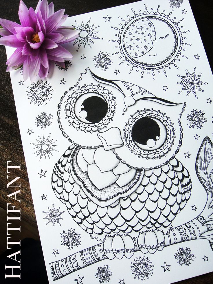 16 best Owl-Adult coloring pages images on Pinterest