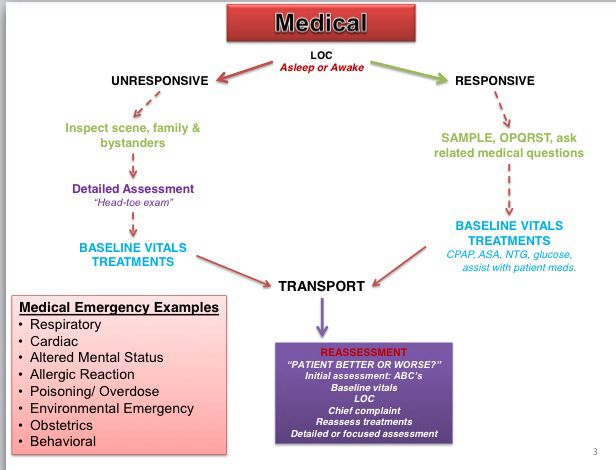 Best Ems Patient Assessment Images On   Nursing