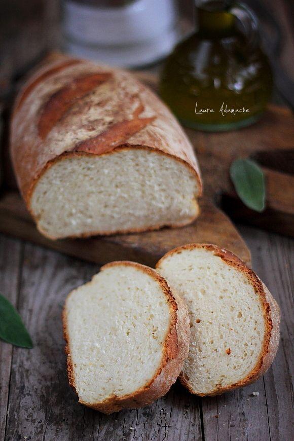 Paine rapida in 30 de minute - retete culinare paine. Reteta paine rapida. Mod de preparare si ingrediente paine rapida in 30 de minute.