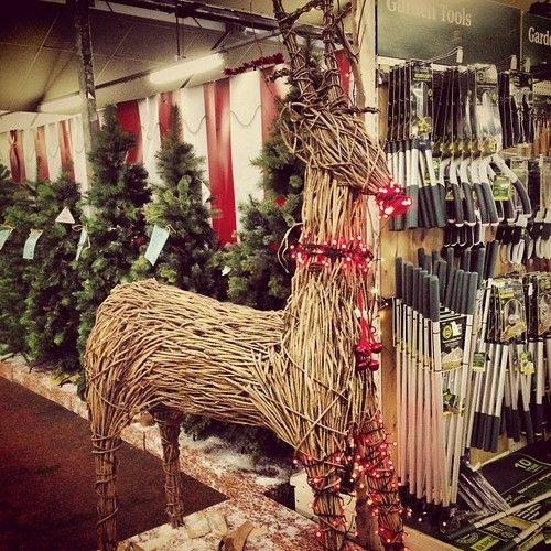 Any takers? £1000 each, I have two available to buy. #reindeer #wicker #wood #Christmas #xmas #work - @dominich16