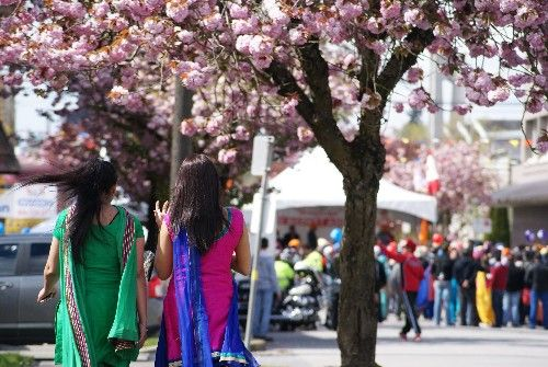 Women in traditional East Indian dress heading down a side street lined with blossoming cherry trees to the parade venue on Main Street.