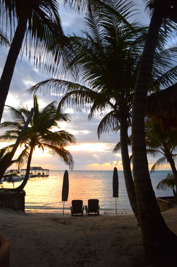 Matachica Beach Resort, Belize  November 2014  photo by Christine Armand  www.he… – baran venedicc