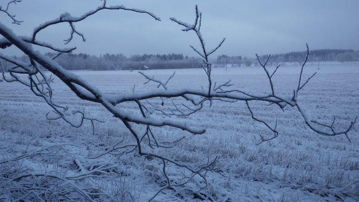 Leppävesi, Laukaa, Finland