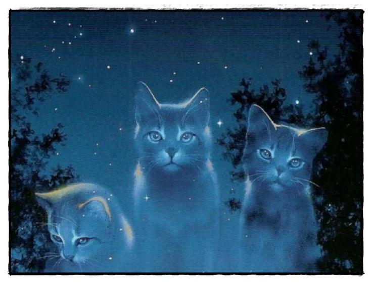 magic moonlight memories