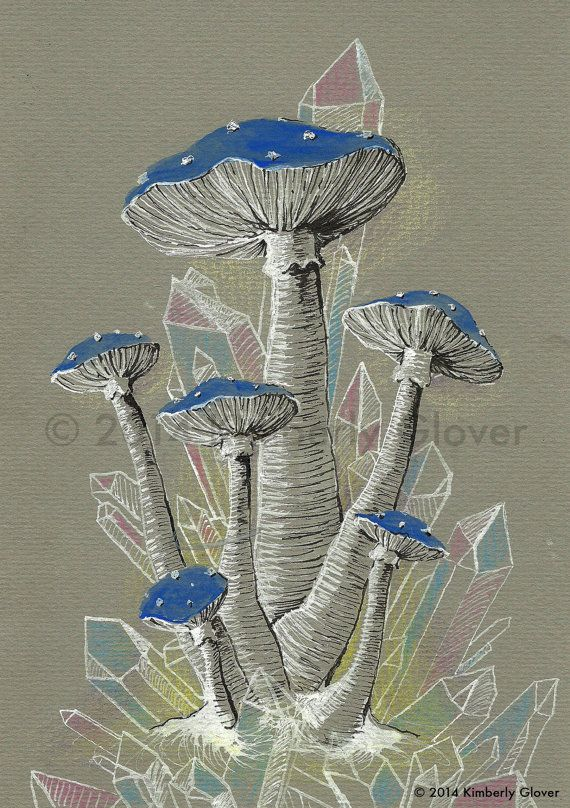 Original Blue and Pink Crystal Mushrooms Drawing / by KimGloverArt, $10.00
