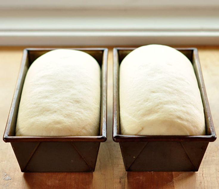 Basic White Sandwich Bread | Recipe | Bread, Homemade ...