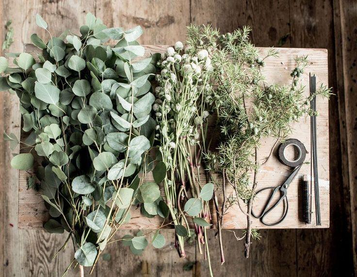 les 25 meilleures id es de la cat gorie plante tombante sur pinterest plante tombante. Black Bedroom Furniture Sets. Home Design Ideas