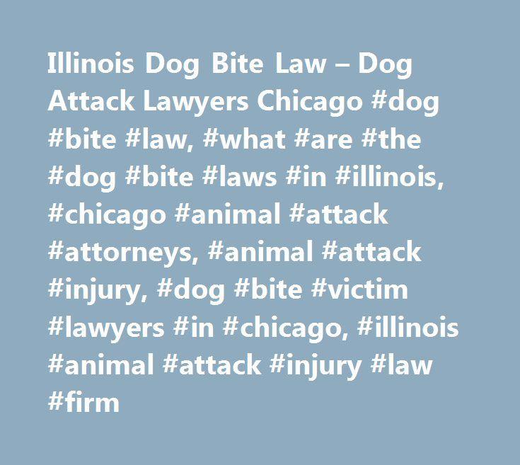 Illinois Dog Bite Law – Dog Attack Lawyers Chicago #dog #bite #law, #what #are #the #dog #bite #laws #in #illinois, #chicago #animal #attack #attorneys, #animal #attack #injury, #dog #bite #victim #lawyers #in #chicago, #illinois #animal #attack #injury #law #firm http://answer.nef2.com/illinois-dog-bite-law-dog-attack-lawyers-chicago-dog-bite-law-what-are-the-dog-bite-laws-in-illinois-chicago-animal-attack-attorneys-animal-attack-injury-dog-bite-victim-la/  # Chicago Dog Bite Victim…