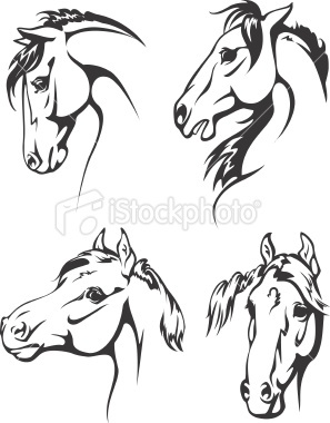 Four horse heads Royalty Free Stock Vector Art Illustration