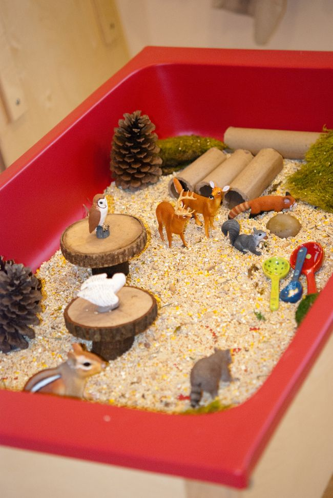 Forest Themed Sensory Table; forest animals, birdseed, wood blocks, tubes and scoops