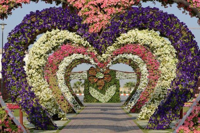 Miracle Garden - #Dubai Un tripudio di profumi, forme e colori sgargianti, in un #giardino di appena 72.000 metri quadrati nel cuore del deserto arabico! Meraviglia allo stato puro, concordi?