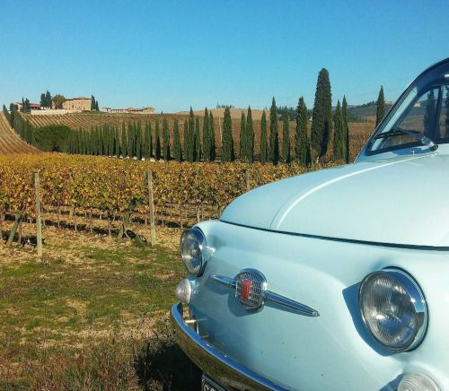 17 Best Images About Fiat 500 On Pinterest