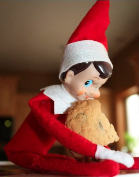 I 39 m just going to guess there 39 s weed baked in elf on a for Elf on the shelf pooping on cookies
