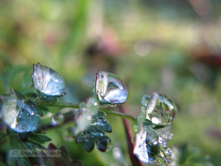 Foto de gotas de agua