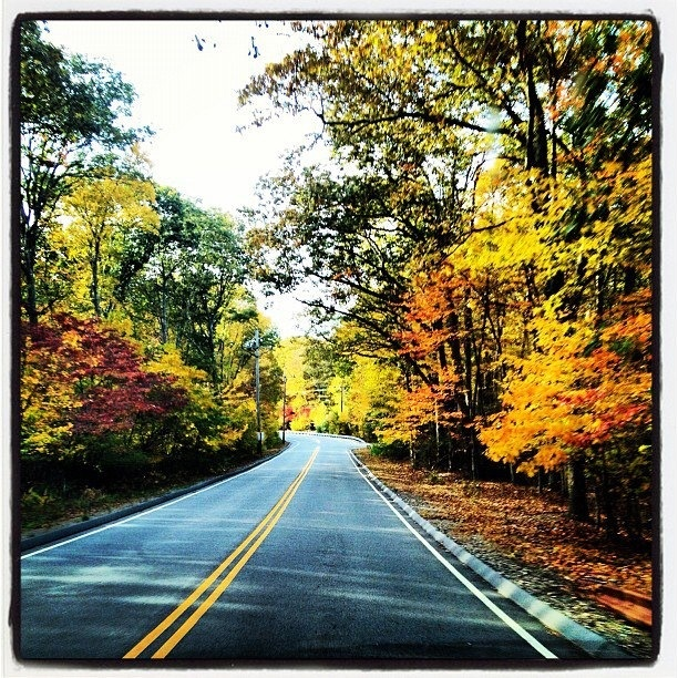 Places To Visit In The Fall On The East Coast: 192 Best Images About Travel