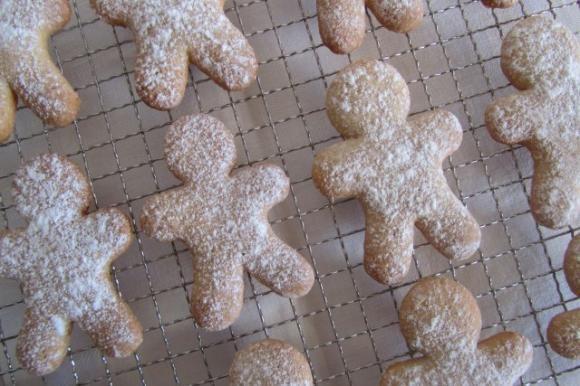 Biscotti speziati zenzero e cannella