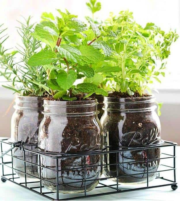 Mason Jar DIY Herb Garden | Fun and Easy Indoor Herb Garden Ideas