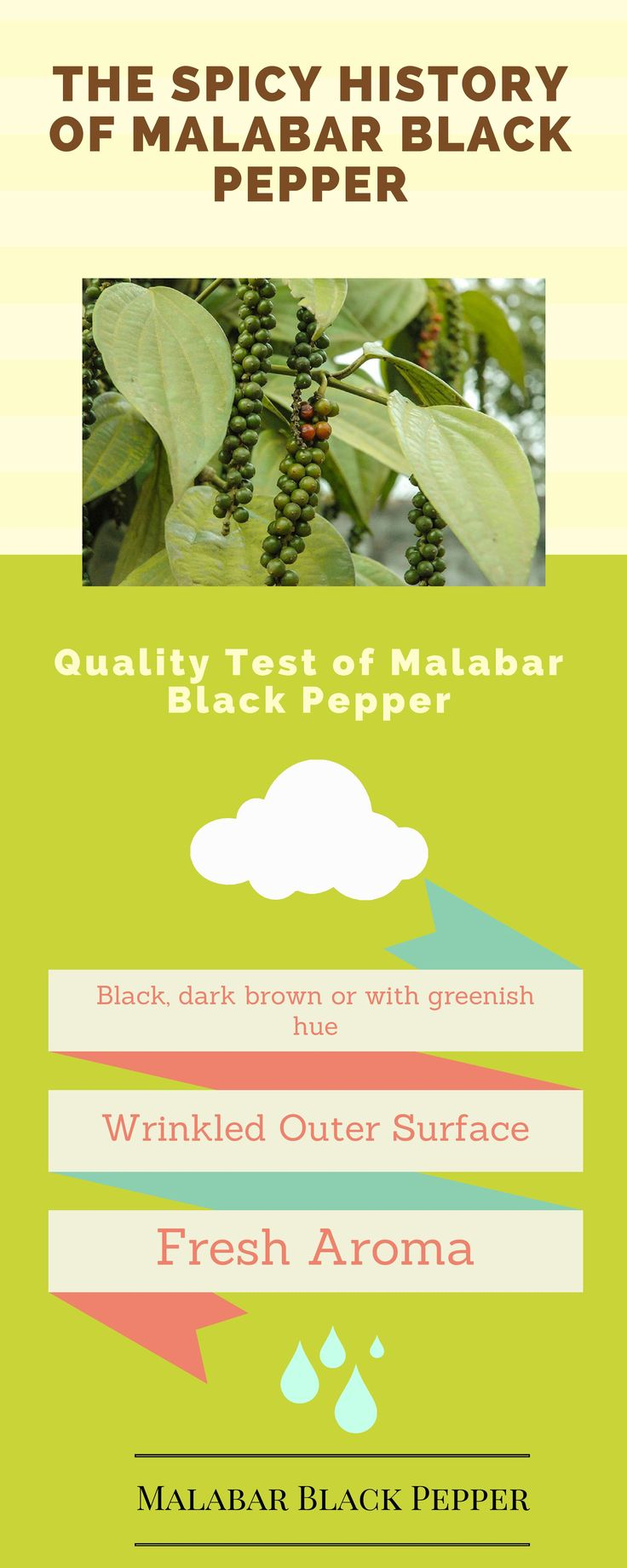 Rich fragrance and aroma of Malabar Black Pepper has attracted people around the world to use it in their signature dishes.