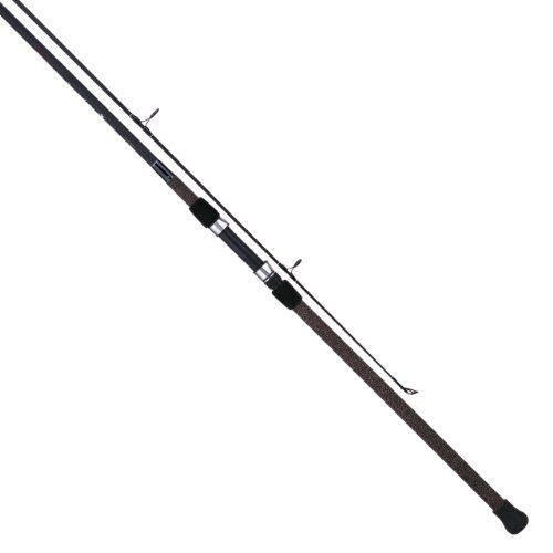 Best 25 surf fishing rods ideas on pinterest pole for Best surf fishing rods