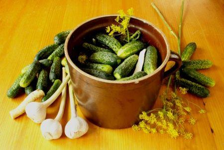 Gurken selbst einlegen: Rezepte für Essig-Gurken, Senfgurken und Gurken süss-sauer