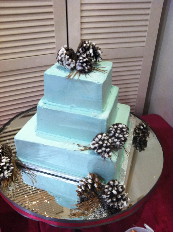 Sugar Frosted pinecones on a Tiffany blue square wedding cake