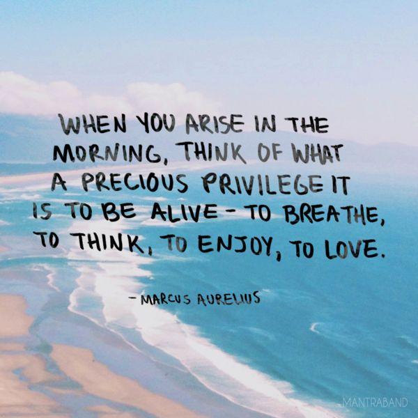 When you arise in the morning, think of what a precious privilege it is to be alive- to breathe, to think, to enjoy, to love.