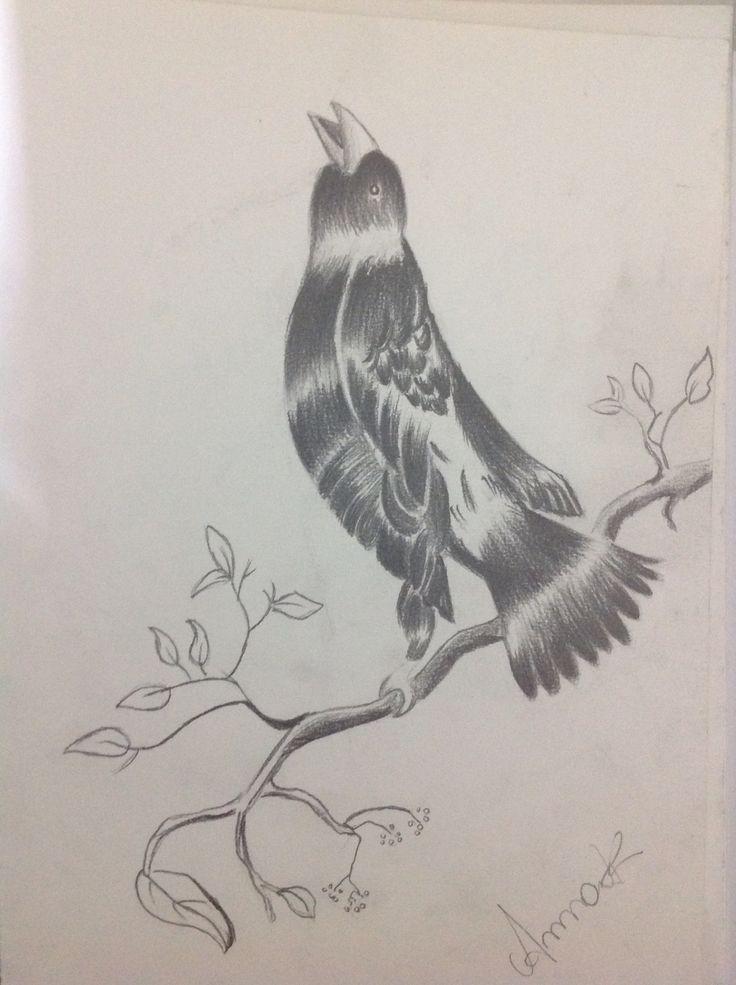 Pássaro em grafite