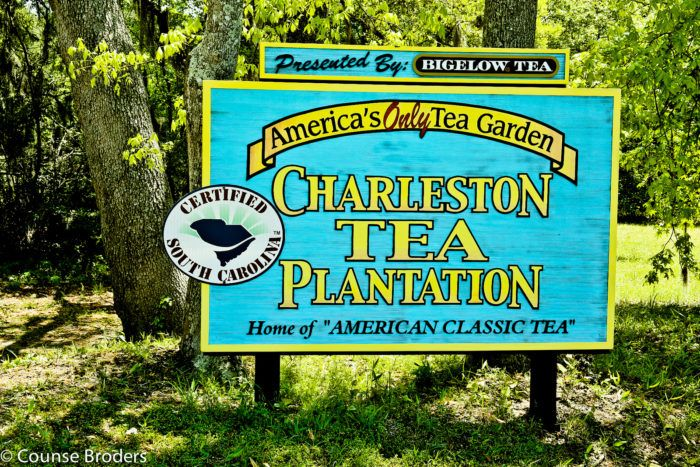 312 best charleston love images on pinterest charleston for Things to do in charleston nc