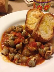 Li cucciolitti co' lu finocchittu servaticu (ovvero le lumachine di mare con il finocchietto selvatico) piatto tipico marchigiano.