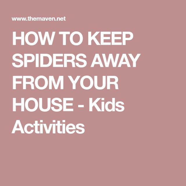 HOW TO KEEP SPIDERS AWAY FROM YOUR HOUSE - Kids Activities