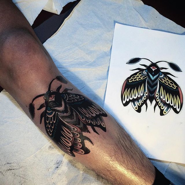Tattoo Art By 9.oat  https://www.instagram.com/ninneoat/  #tattoo #tattoos #tattooed #tatts #tattooideas247 #tattooist #ink #inked #inkaddict #traditional #traditionaltattoo #oldschool #oldschooltattoo #moth #mothtattoo #calinahaindesign #revolutionneedles #stixistattoosupplies #sinsandsigns @stixistattoosupplies @sinsnsigns @revolutionneedles @tattooideas247