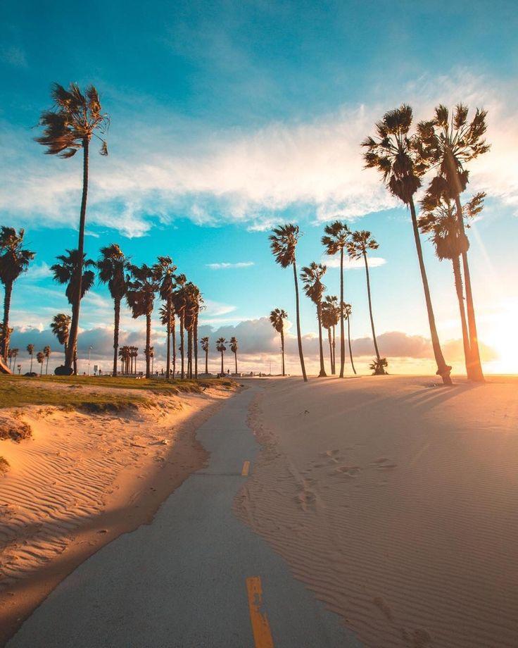 Wallpaper Los Angeles: Best 25+ Beach Background Ideas On Pinterest