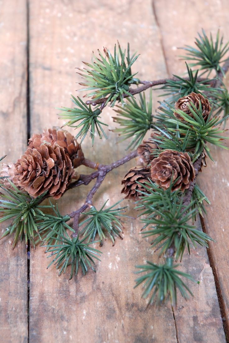 Pine Branch Spray With Cones 23in Save On Crafts Com Wedding Decorations Pine Branch Branch